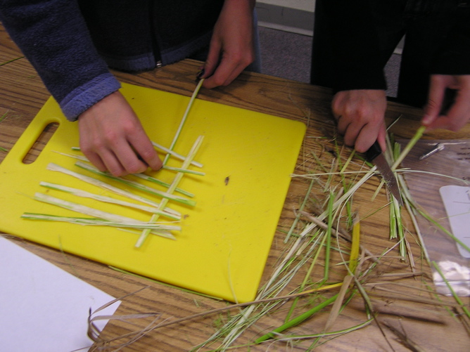 How to make paper from papyrus